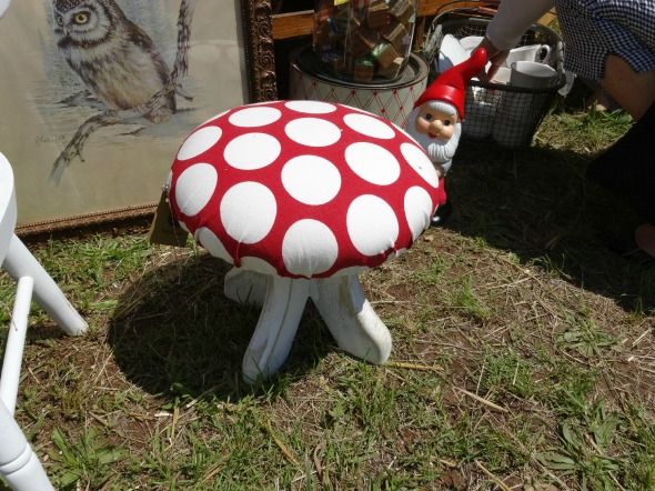 lucketts toad stool